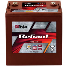 Тяговый аккумулятор Trojan T875-AGM 160Ah